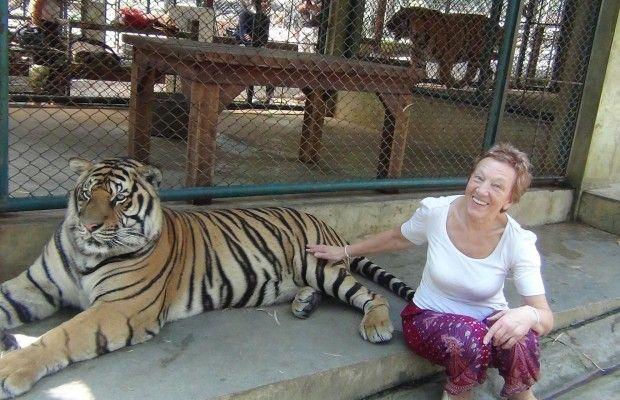 pas-tigra (2)