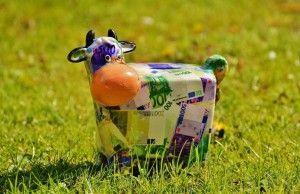 pinigu karve