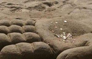 delnas su pinigais