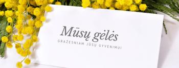 Pūkuotas vėjas_gėlių prenumerata ersli mama