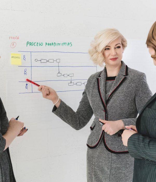 Dr. Diana Satkutė Rezultatų planuotė 2020_versli mama